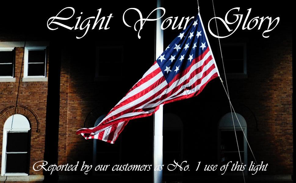 GBS9809 LED flag light