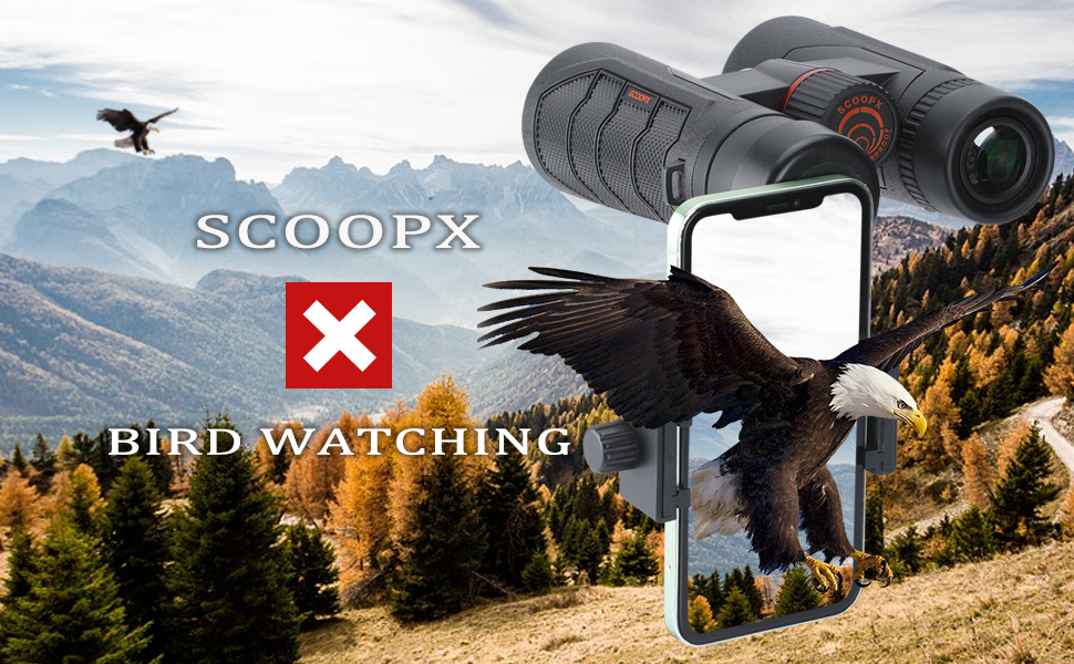 BINOCULARS FOR BIRD WATCHING, BIRD WATCHING BINOCULARS, BINOCULARS FOR ADULTS, 10X42 BINOCULARS