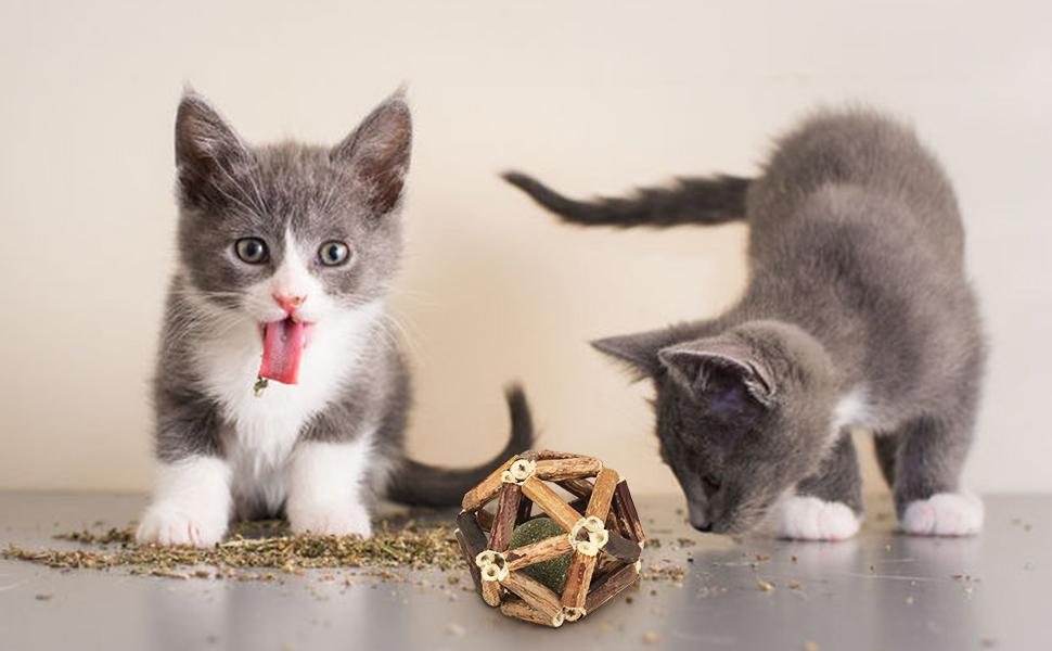 Catnip toy