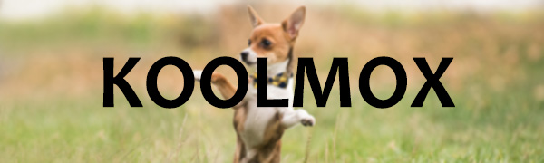 koolmox bow ties for your cool most beloved pet