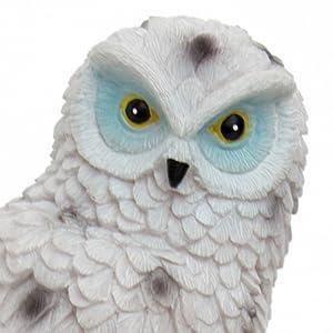 owl to scare birds away