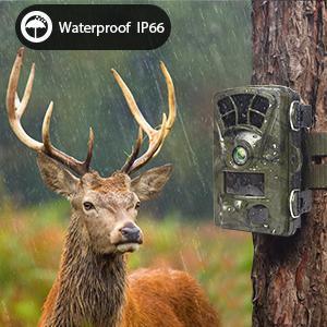 trail camera waterproof