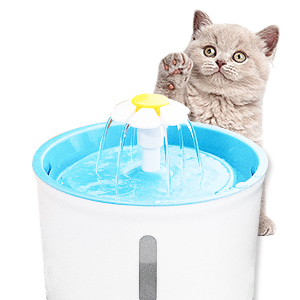 For cat fountain