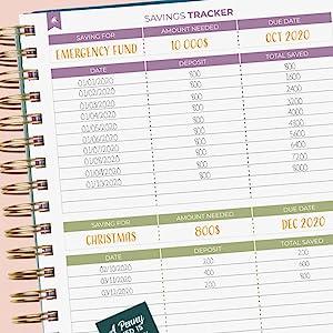 Savings Tracker page