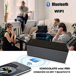 BSL-miniPRO-creatividad-amazon-altavoz,-wifi,-bluetooth,-manos-libres,-10W,-USB,-música,-llamadas