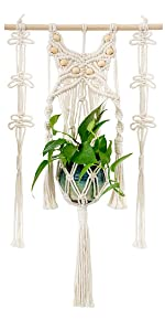Wall mounted plant hanger