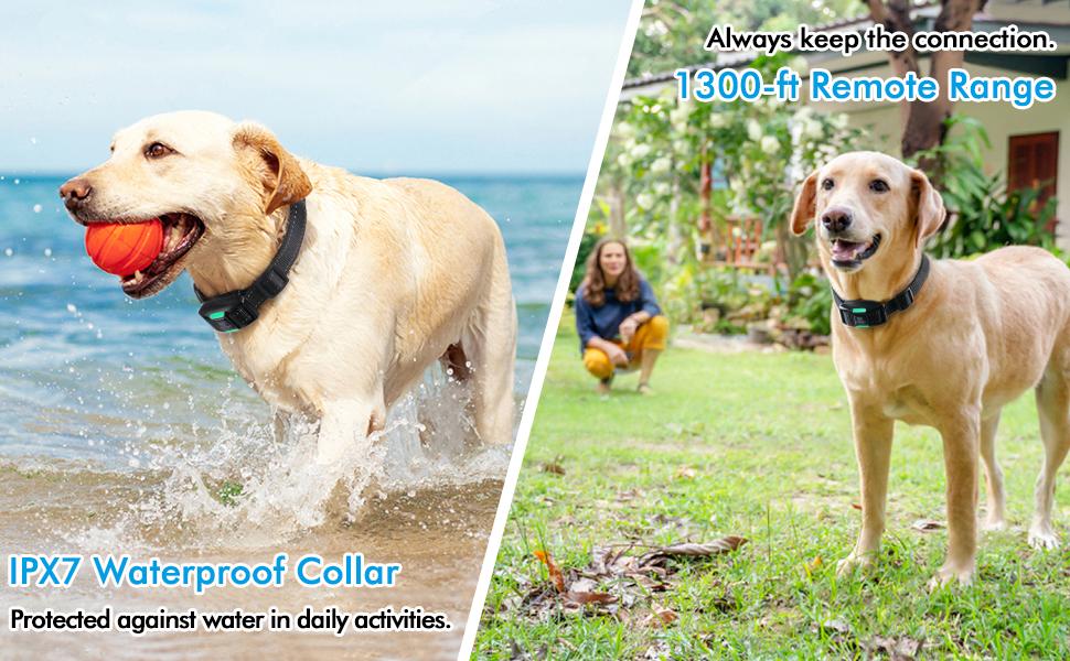 rabbitgoo Dog Training Collar,  Dog Shock Collar with Remote