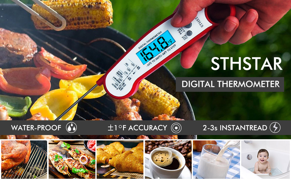 Thermometer for meat A