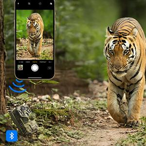 trail camera WiFi Bluetooth