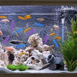 Compatible with Most Fish Tanks