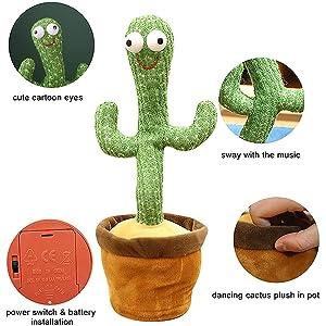 Cactus Dancing Installation method