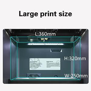 Large print size