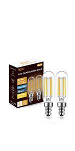T6 LED Edison Blub