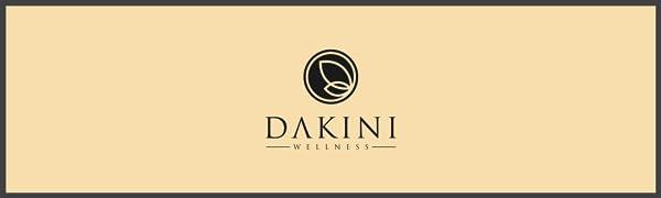 dakini logo banner