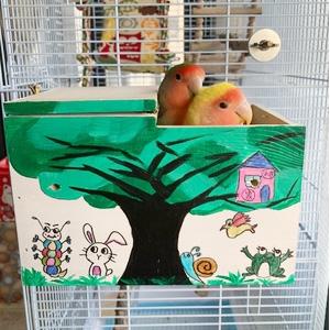 Decorate Bird's House