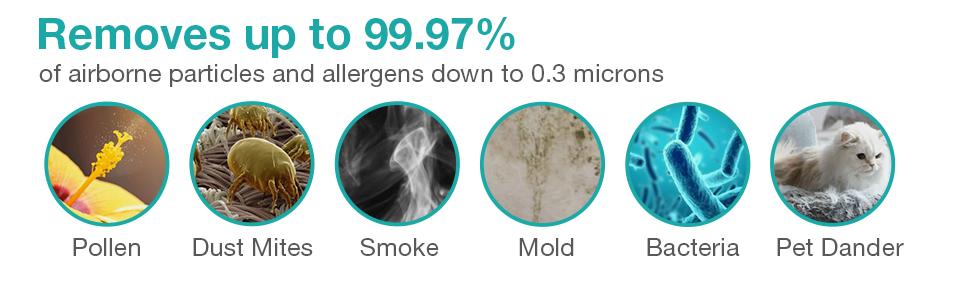 SimPure HP8 H13 HEPA air purifier filters allergens like pollen, pet dander and dust mites