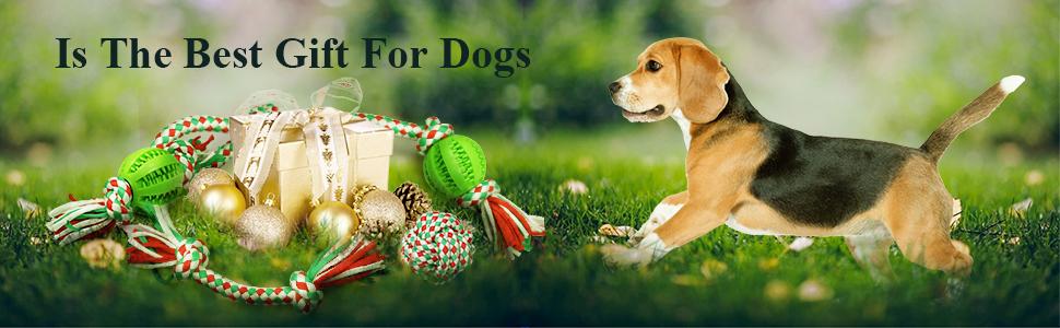Set dog toy 4