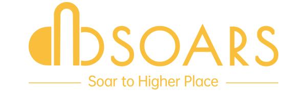 DBSOARS Logo