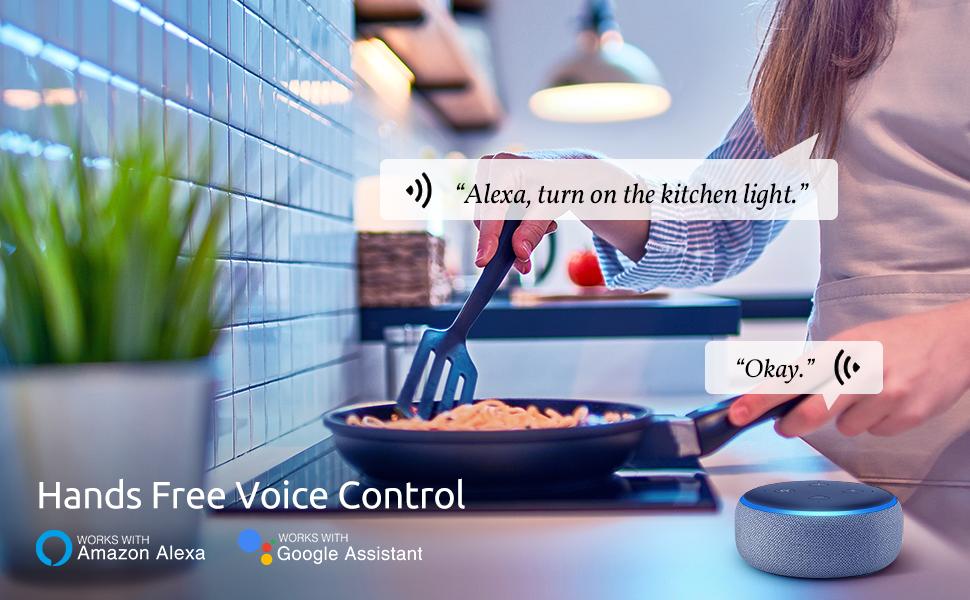 Voice Control Alexa