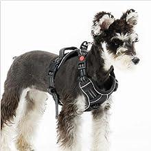 Bedsure | dog harness no pull