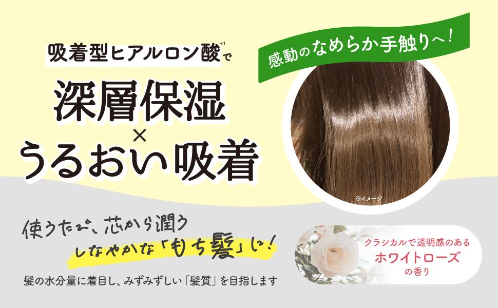 吸着型ヒアルロン酸で 深層保湿×うるおい吸着!使うたび、芯から潤うしなやかな「もち髪」に。