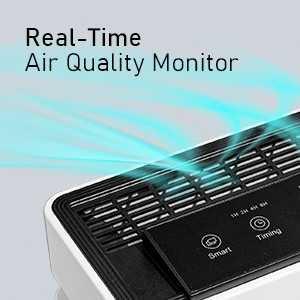 Real-time Air Quality Monitor