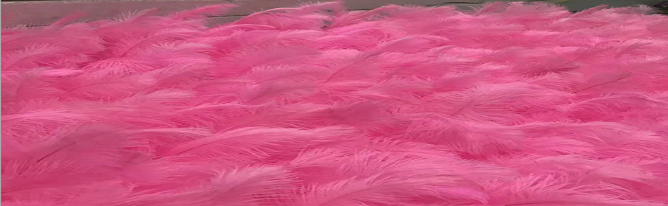 Feather wall decoration