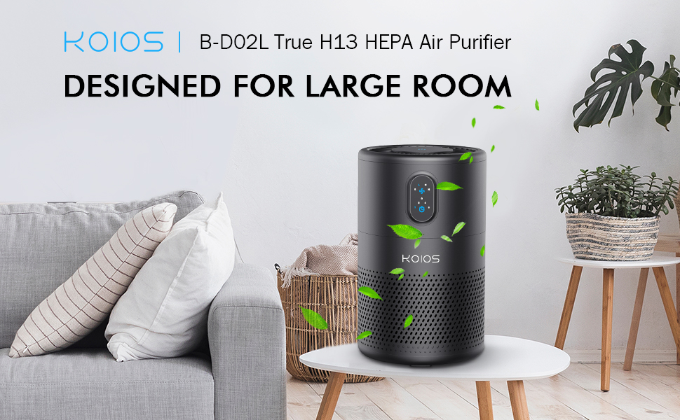 air purifiers for home large room