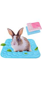 Small Animal Bed for Summer