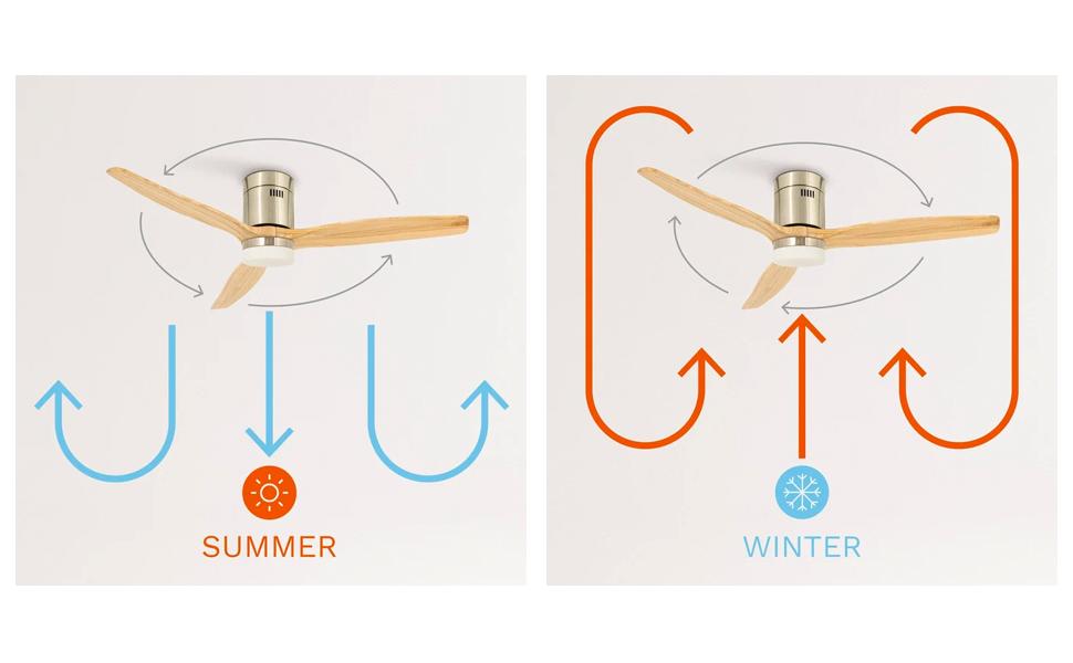 Función verano invierno