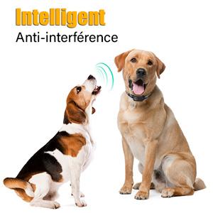 collier anti aboiement chien electrique colliers anti-aboiement pour chiens electric électronique