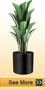 8 Inch Black Ceramic Pot with Plug