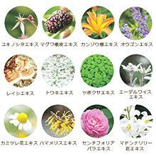 12種類の美容成分