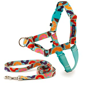 Easy Walk Chic Harness and Leash on white backgruond