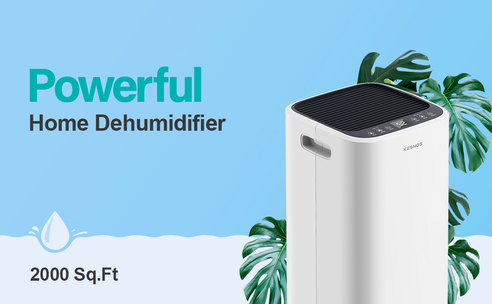 Kesnos 2000 Sq. Ft Dehumidifiers for Large Home and Basements, with Continuous Drain Hose