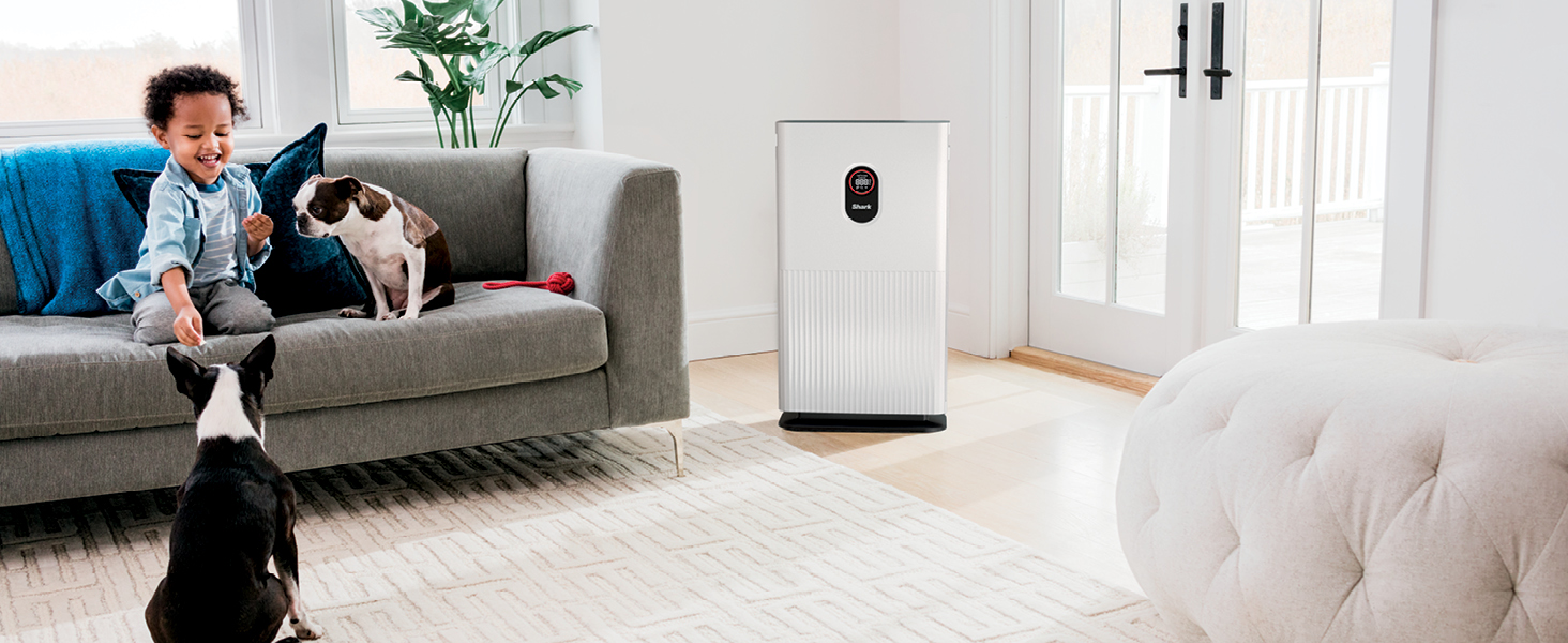 kid with dogs and air purifier