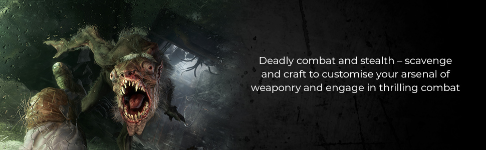 Deadly combat and stealth