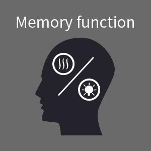 Memory Function