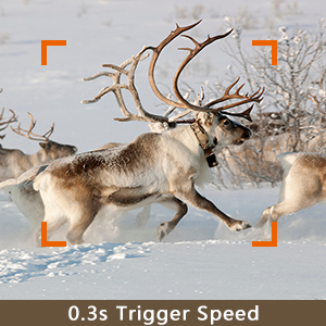 fast trigger speed