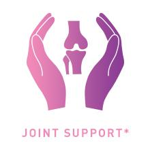 joint support image