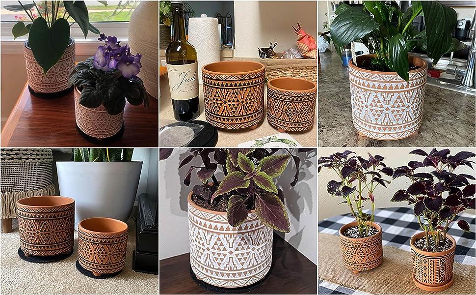 Ceramic Plants Pot with Drainage Hole