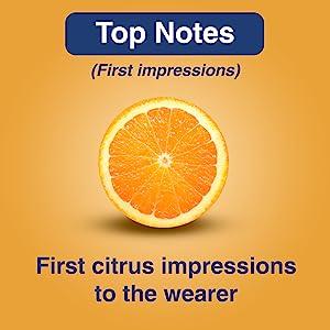 Top Notes Citrus