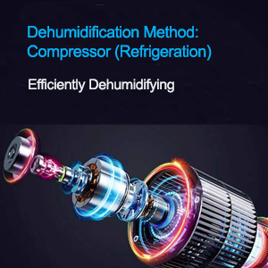 JHS Dehumidifier