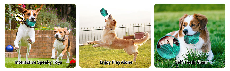 squeaky toys