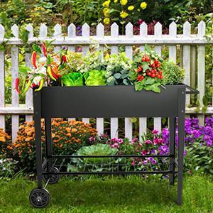 planter box in garden