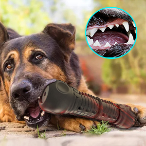 durable chew toy for aggressive chewers