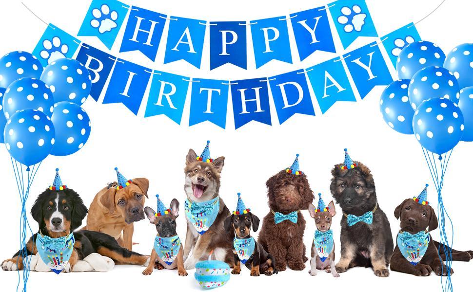 dog birthday set