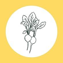 Fiesta Raddish, Rainbow Salad Grow Kit, Non GMO Heirloom Seeds,
