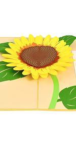 PopLife Sunflower Pop Up Mother's Day Card