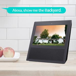 compatible avec Alexa